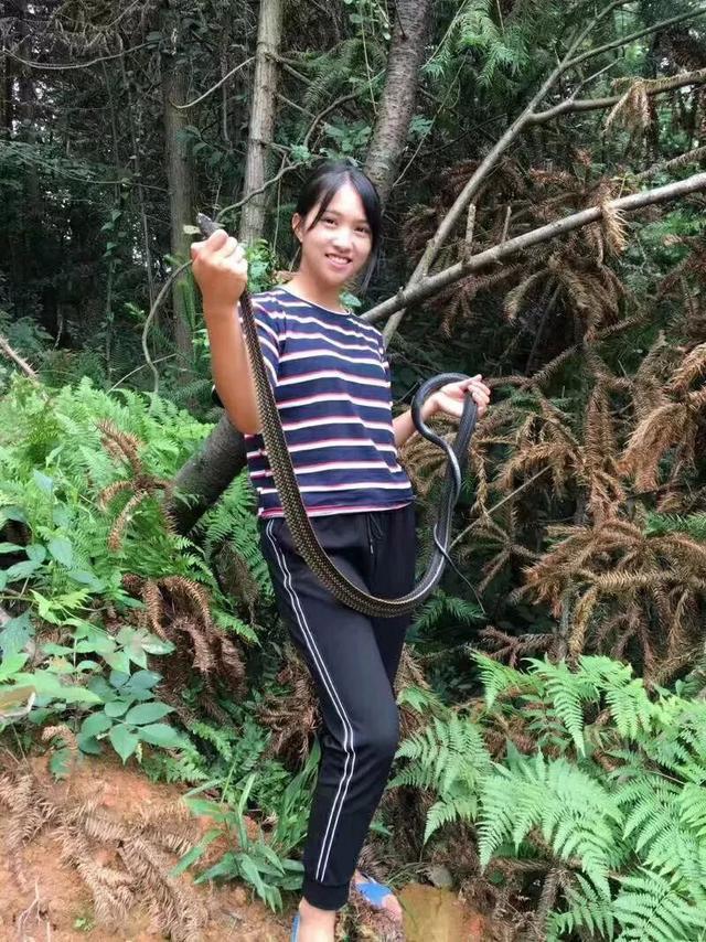 袁桂花抓到这条蛇后,放生回归大自然了
