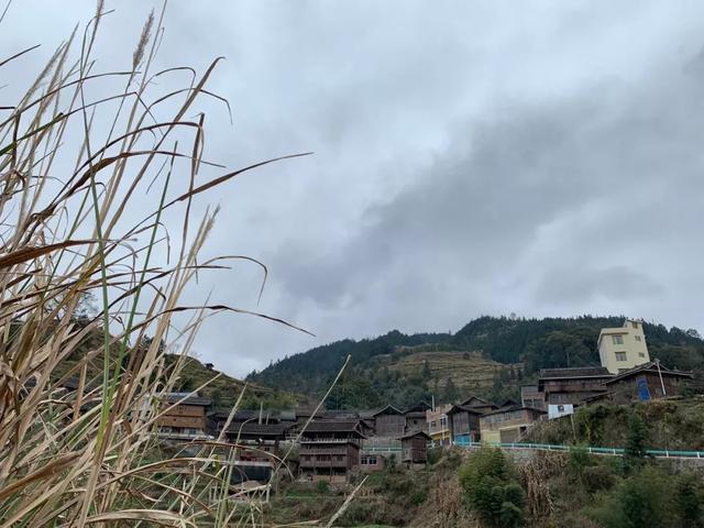 洋卫侗寨局部图景